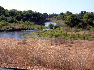 Flowing toward the Delta: the lower Merced River near its confluence with the San Joaquin River.