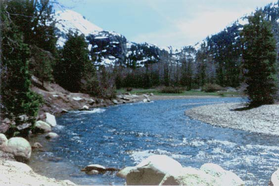 Where you water comes from: Stanislaus River, running through Kennedy Meadows